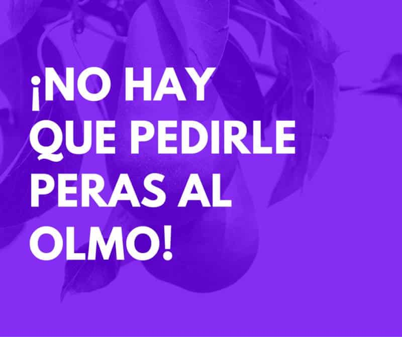 Food Spanish Idioms: no hay que pedirle peras al olmo