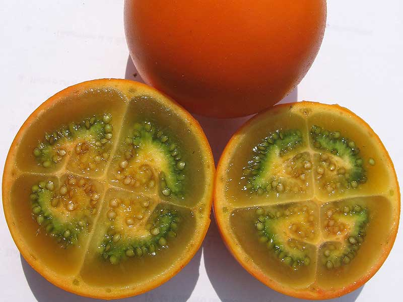 Colombian exotics fruits: Lulo