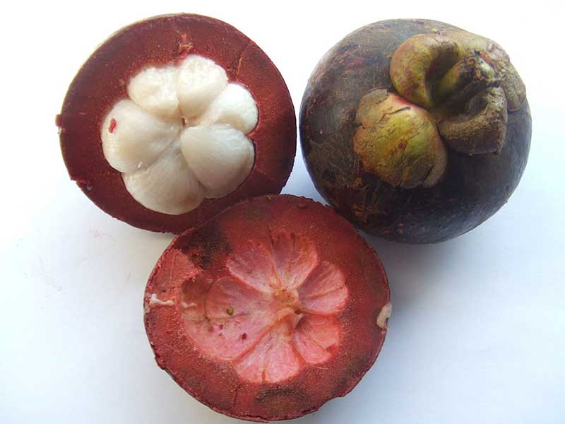 Colombian exotics fruits: Mangostino