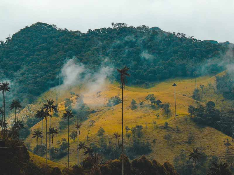 Things You Probably Didn't Know About Colombia : Biodiverse Country